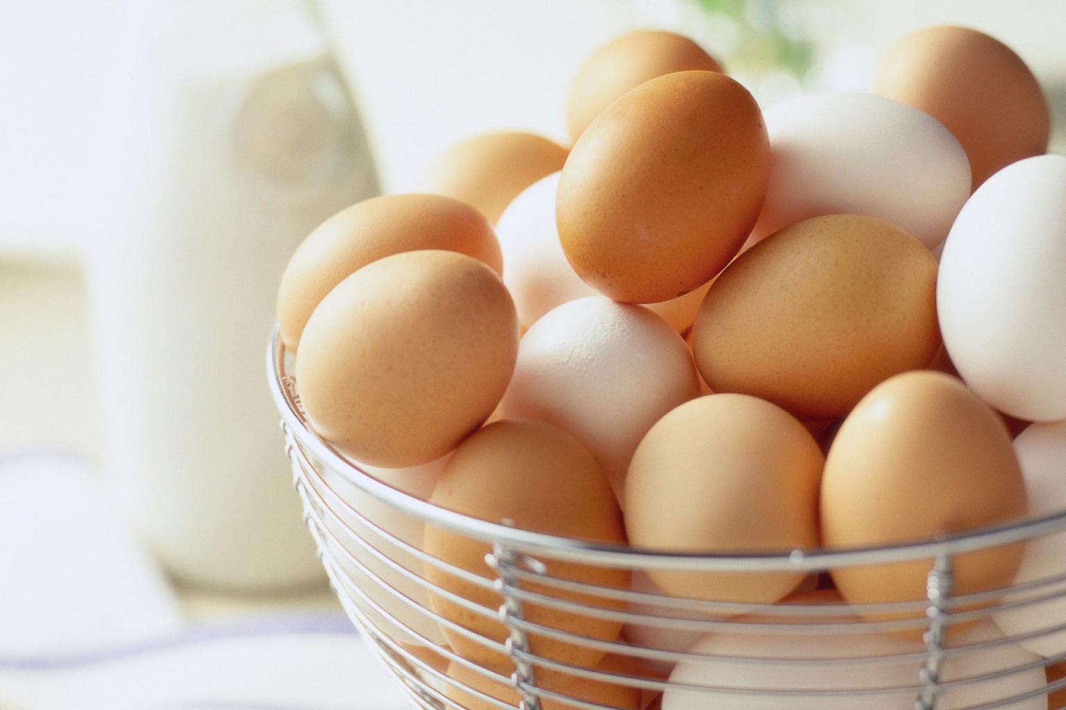 eggs-banner2